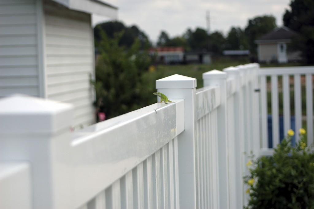 Vinyl Fence Installation Services
